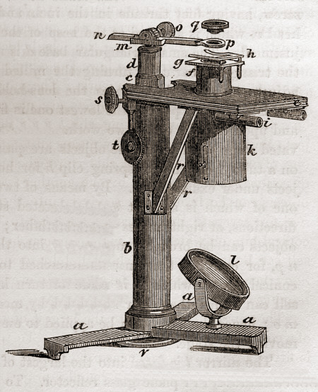 [ dissecting microscope, middle of 19th century ]
